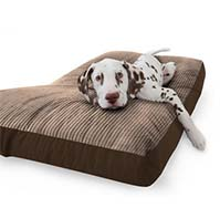 Cord Dog Bean Bag Bed